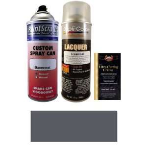 Trim) Spray Can Paint Kit for 2001 Nissan Pathfinder (KR2) Automotive