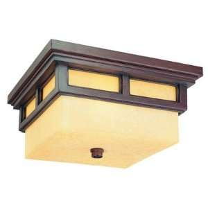 Cottage Grove Collection 13 Wide Outdoor Ceiling Light